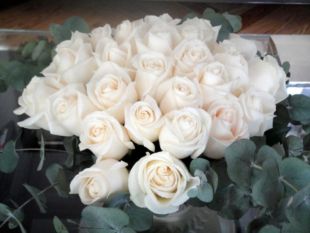El significado del color de las rosas - Significado rosas amarillas ...