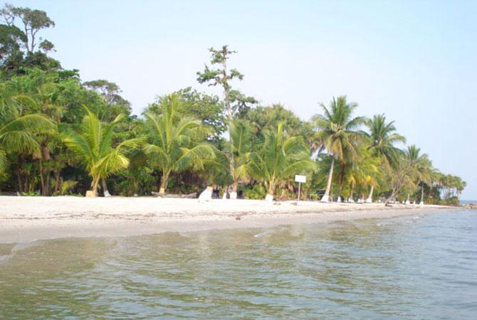 playa-dorada