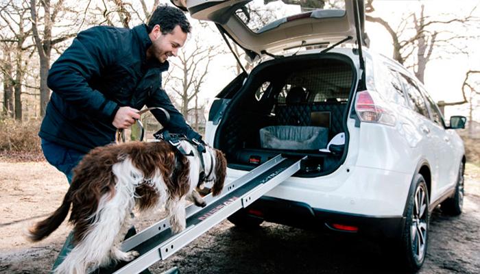 Nuevo prototipo de auto con compartimento para perros