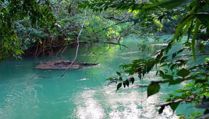 Prácticas responsables y sostenibles de agua que realiza Naturaceites