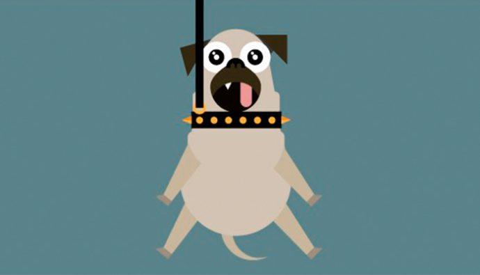 ¿Por qué es dañino el collar de ahorque para las mascotas?