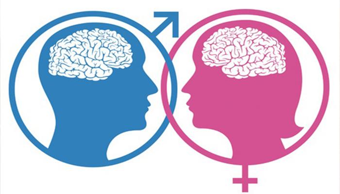Según estudio mujeres tienen el cerebro más pequeño que los hombres