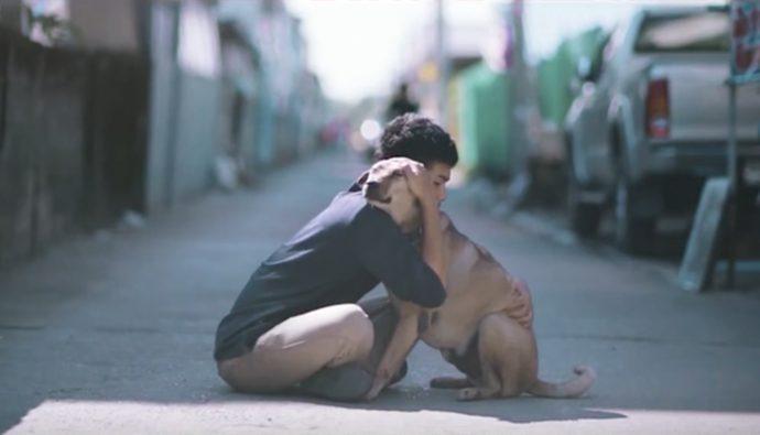 Video: Joven tailandés abraza a perros de la calle por una buena causa