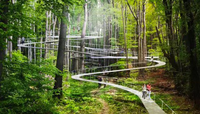 Increíble parque flotante creado entre árboles