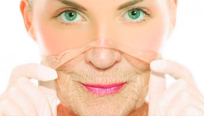 ¿Cuál es el secreto para disminuir el envejecimiento celular?