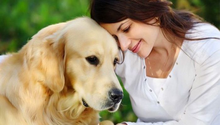 Ahora se podrá viajar por el mundo mientras se cuidan animales