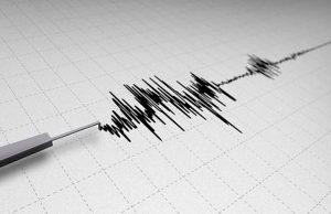 Video: Así se vivió el terremoto con una magnitud de 7,1 registrado en México
