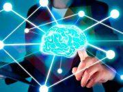 """¿De qué se trata la nueva disciplina """"Neuroliderazgo""""?"""