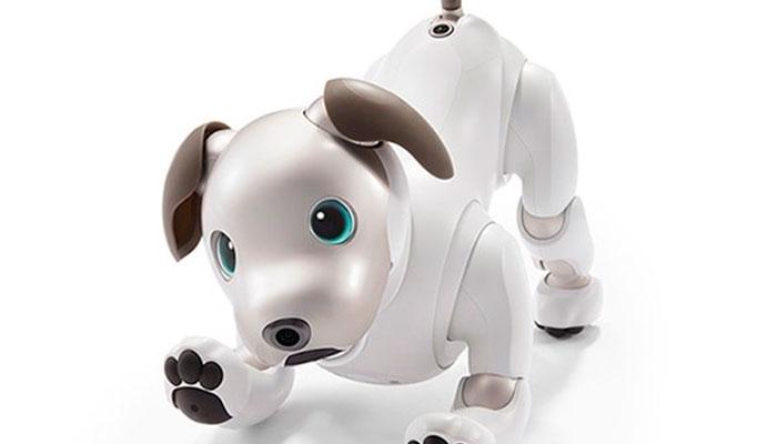 Sony presenta su nueva mascota robótica