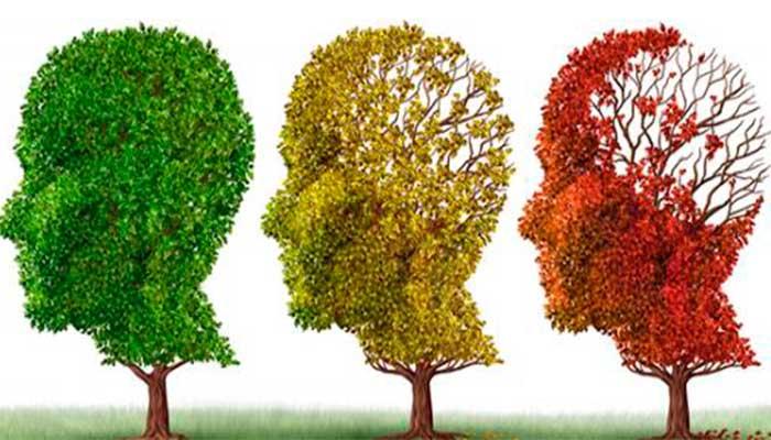El secreto para mejorar la memoria y el pensamiento