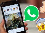 Instagram Stories podrían ser compartidas en WhatsApp