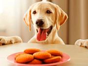 ¿Cómo hacer galletas para perros en el microondas?