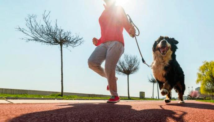 Asiste con tu mascota a la primera Pet Run Mixco, marzo 2018