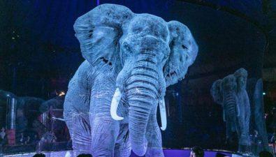 Circo Roncalli: el circo que sustituyó a los animales por hologramas